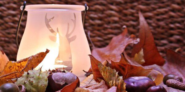Otoño, purificación, flor de lavanda