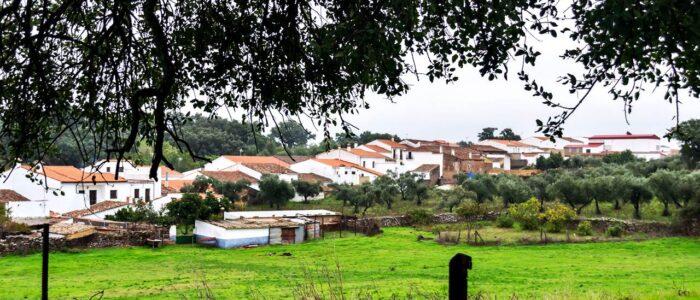 Francisco José Tebar Salas - DSC_0013-crop