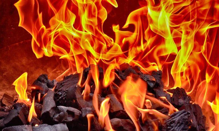 la leña ardiendo y la ceniza (Dogen)