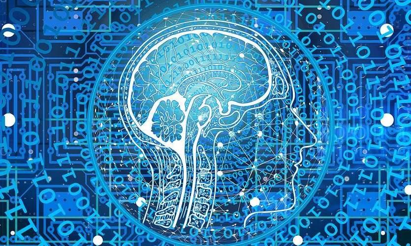 Mente, cerebro, consciencia