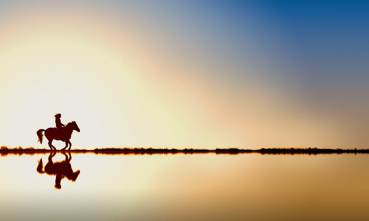 Convertirte en tu verdadero ser. La imagen idealizada (y VII)